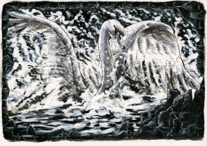 Swan (The Mystery of Perception)